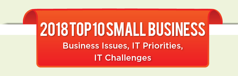 2018 Top 10 Small Business - Business Issues, IT Priorities, IT Challenges Infographic