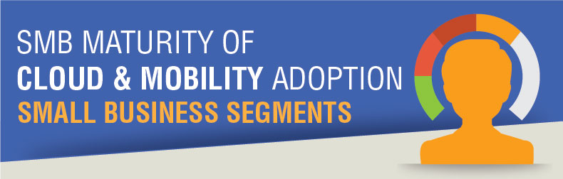 Small Business Cloud & Mobility Attitudinal Segments Infographic