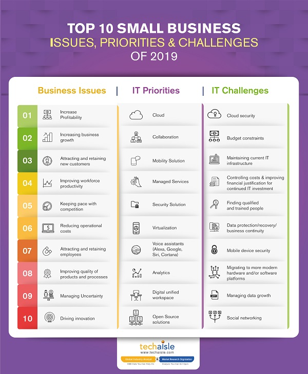2019 top10 small business it priorities business issues techaisle infographics low res