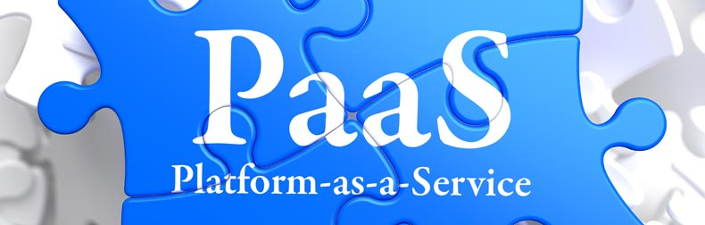 20 Questions with SMB PaaS Users