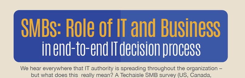 SMBs: Role of IT and Business in Decision Process Infographic