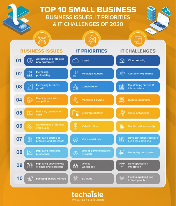 2020 top10 small business it priorities business issues techaisle infographics low res
