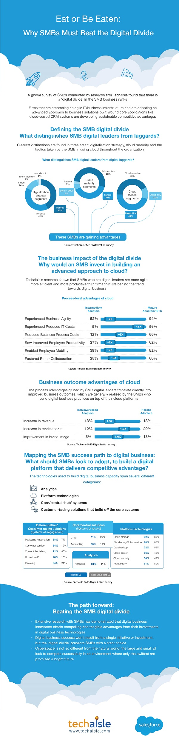 techaisle infographic smb digital divide salesforce low res