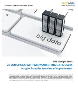 techaisle-20-questions-midmarket-bigdata-users